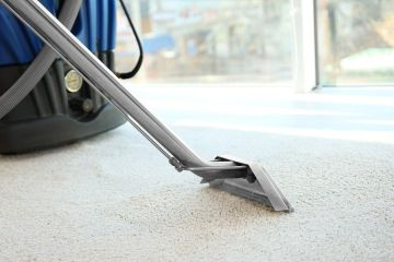 Carpet Steam Cleaning in Northdale by Manny's Carpet Cleaning