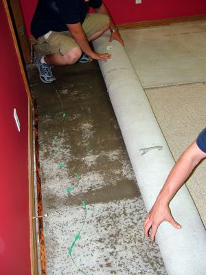 Mango water damaged carpet being removed by two men.