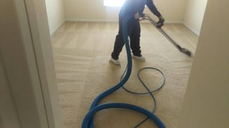 Move Out Carpet Cleaning in Tampa, FL (1)