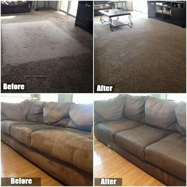 Before & After Upholstery & Carpet Cleaning in Tampa, FL (1)