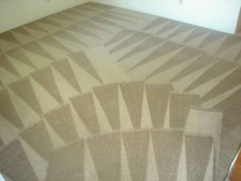 Carpet Cleaning in Riverview, FL