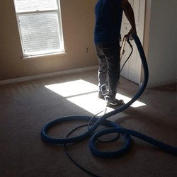 Carpet Cleaning in Temple Terrace, FL