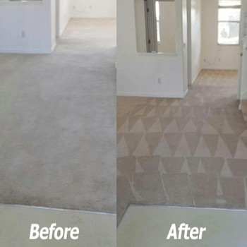 Before & After Carpet Dyeing in Tampa FL