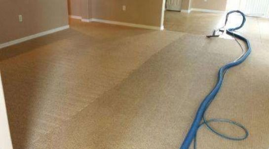Effective Carpet Cleaning in Tampa, FL by Manny's Carpet Cleaning (1)